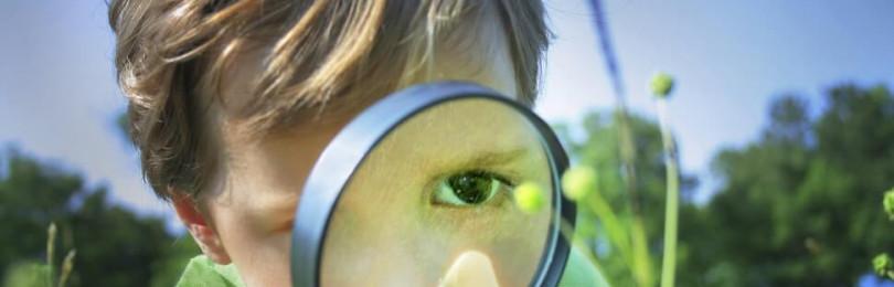 Как пробудить в ребенке любознательность