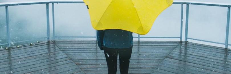 Зонт – незаменимый аксессуар для любой погоды