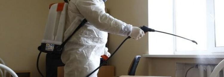 Уничтожение клещей и насекомых сотрудниками «ГЛАВДЕЗЦЕНТР»