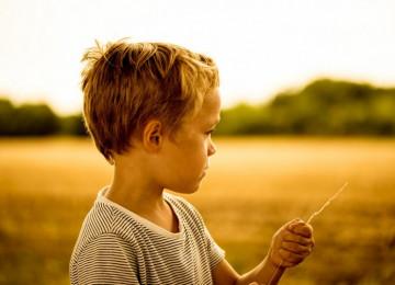 Ошибки в воспитании мальчиков
