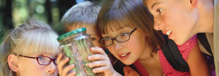 Как развить детское системное и творческое мышление