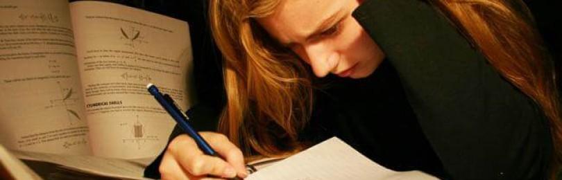 Написание курсовых и дипломных работ от профи