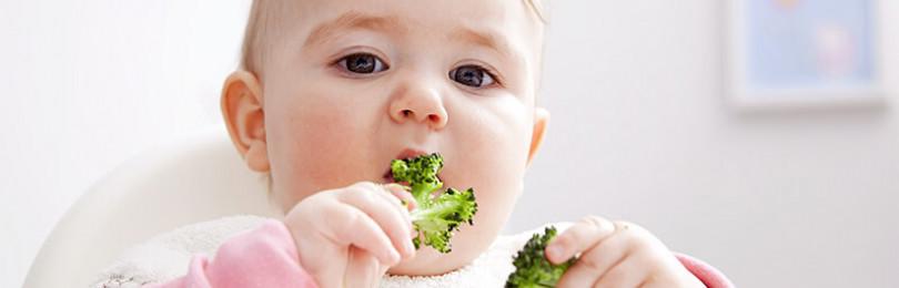 Особенности овощного прикорма