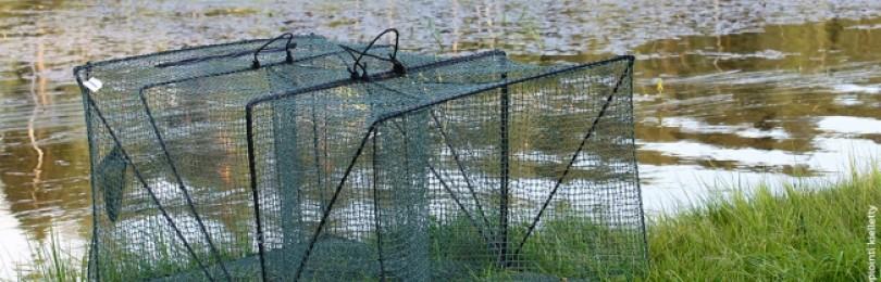 Рыболовные товары и снасти оптом