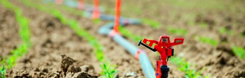 Важные товары для сада — удобрения, капельный полив
