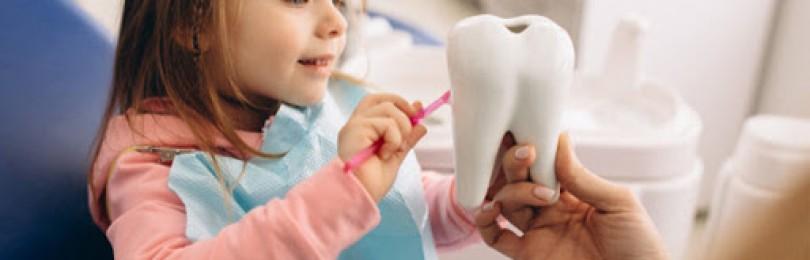 Какие услуги оказывает детская стоматология