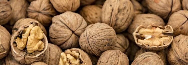 Доставка свежих орехов: хранение и употребление