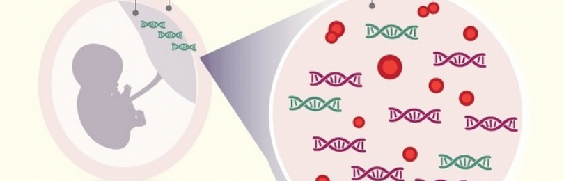 Неинвазивный пренатальный тест от лаборатории Медикал Геномикс в Москве